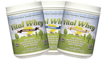 vital whey 3 jar display Well Wisdom